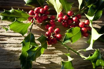 Stechpalme, Ilex Zweige mit roten Beeren auf altem Treibholz / Holz Brett