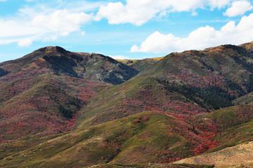 Wall Mural - Utah Mountains Fall Colors
