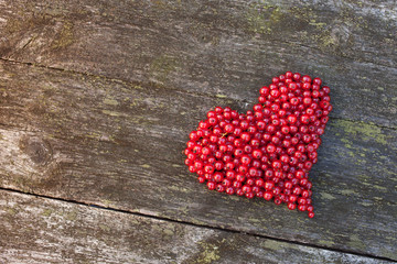 Heart currant berries