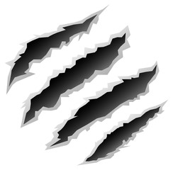 claw scratches vector black white