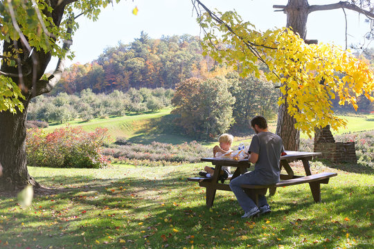 Father and Child Picnic under Trees at Apple Orchard