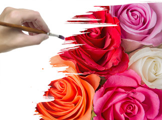 hand paint picture with roses