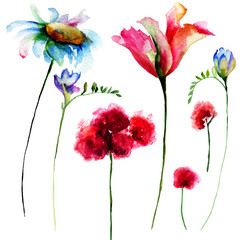 Set of original watercolor flowers