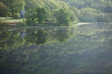 Reflection of trees in a loch, Scotland, United Kingdom, Europe