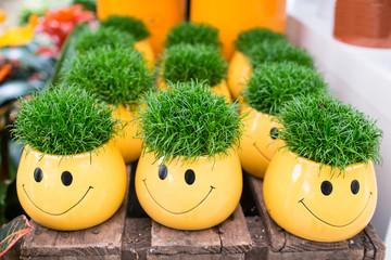 Gelbe Blumentöpfe als Smilie mit grünem Gras