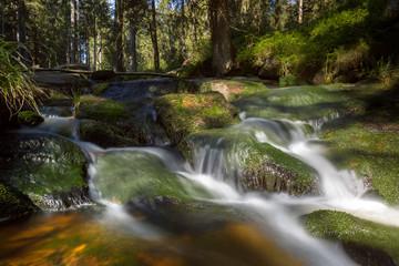Am oberen Bodefall im Nationalpark Harz
