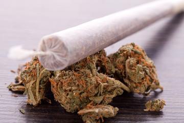 getrocknete Cannabis Blüten Gras mit Joint rauchen Kiffen