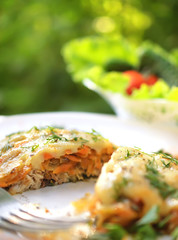 Baked fish with cheese sauce, carrots and onions, decorated with fennel on a white plate. Selective focus on a cut of fish.