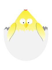 cartoon easter chicken in egg . vector funny animal illustration