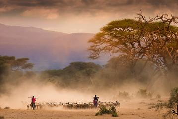 Masai shepherds with herd og goats