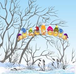 Zimowe ptaki