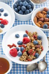 delicious breakfast with granola, berries and yogurt, vertical