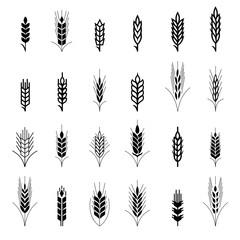 Wheat ear symbols for logo design