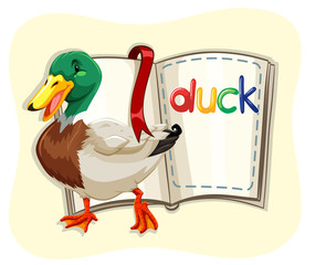 Little duck and a book