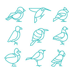 Bird Icons, Thin Line Style, Vector Illustration Set