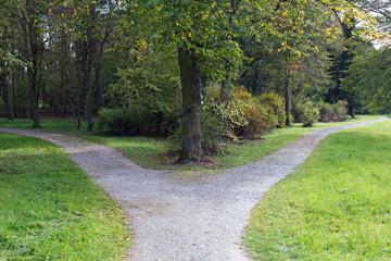 Rechts oder links? Eine Weggabelung im Wald
