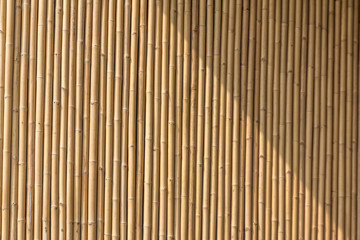 bamboo texture pattern.