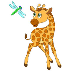 cute giraffe is happy to see dragonfly