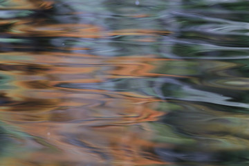 texture of a dark autumn water in the river