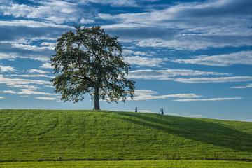 Grüne Landschaft unter weiß-blauem Himmel inspiriert junge Frauen zum Fotografieren