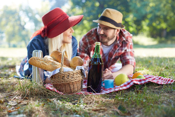 Healthy vegetarian or vegan picnic with a delicious spread of fr