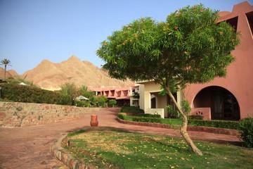 red mountains, rocks Egypt Sinai
