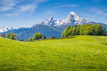 Idyllic landscape in the Alps with green meadows and farmhouse Wall mural