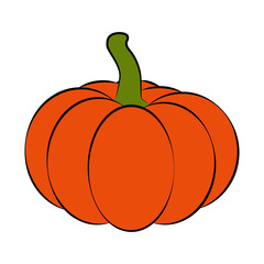 Halloween pumpkin vector illustration isolated on white background.