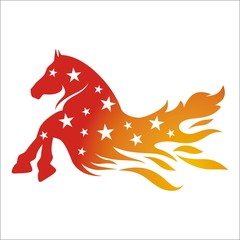 stallion star