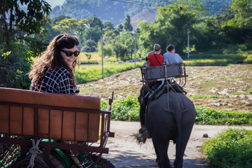 Tourist come visit and ride elephant
