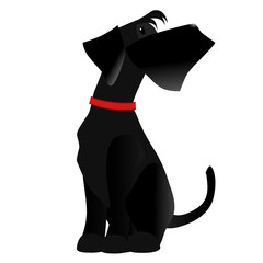 Vector dog breed Giant Schnauzer color black isolated