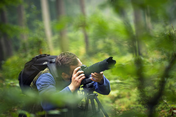 Man photographing in the forest