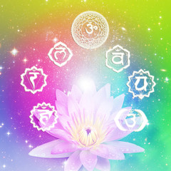 seven symbols of chakra with a flower lotus