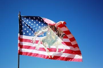 Navajo flag in Arizona, USA