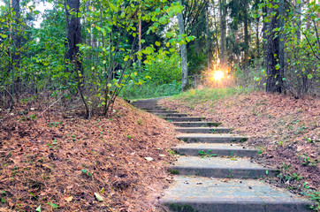 Beautiful evening scene in autumn park with sun rays