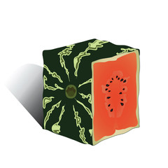 Background with watermelon