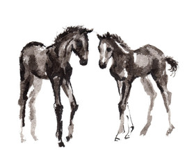 Playing foals, walking, oriental ink painting. Sumi-e art.