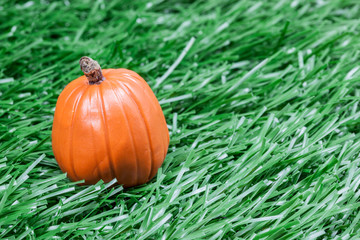 pumpkin sitting in the tall grass