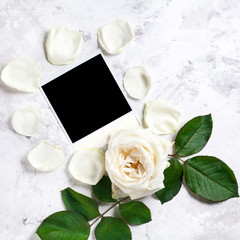 White rose and blank photo