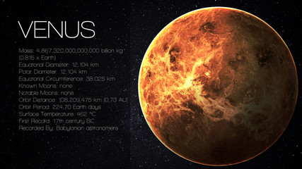 Wall Mural - Venus - High resolution Infographic presents one of the solar