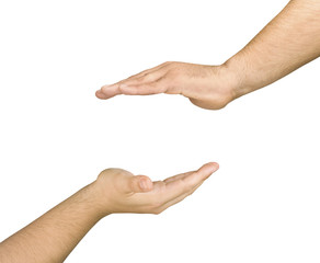 Two cupped protection hands isolated