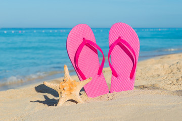 Travel by sea. Beach vacation. Pink flip-flops and starfish on sandy seashore.