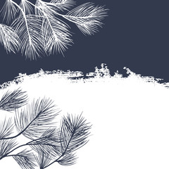 Conifer branches background