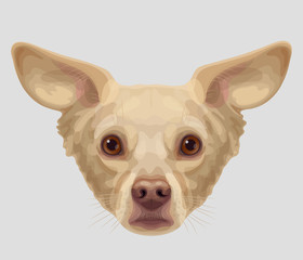 Drawn muzzle of lop-eared dog