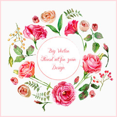 Vector set of different red, pink flowers for design. Watercolor roses, leaves. Set of floral elements to create compositions.