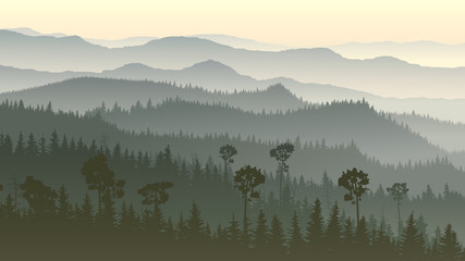 Horizontal illustration of misty forest hills.