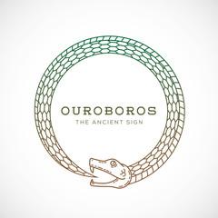 Abstract Vector Ouroboros Snake Symbol, Sign or a Logo Template