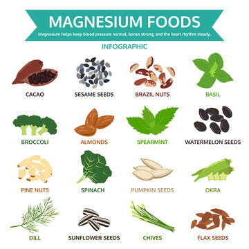 magnesium foods, healthy food vector illustration, infographic