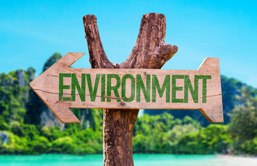 Environment arrow with beach background