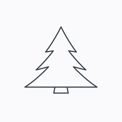 Christmas tree icon. Forest or nature sign.